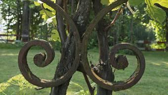 Nur noch die Pergola erinnert an die verschwundene Villa Kann