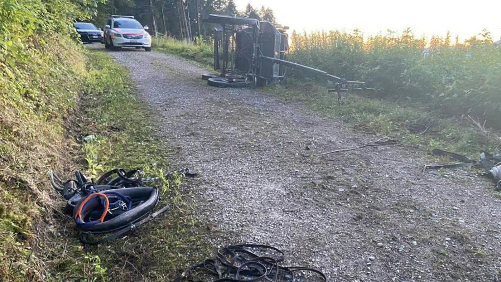 Auch Pferd im Spital: Sechs Verletzte bei einem Unfall mit einer Pferdekutsche