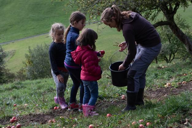 Vor dem «Z'Mittag» sammelten die Kinder Äpfel, um daraus Süssmost zu machen.