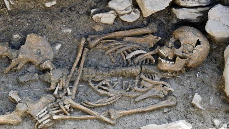 Noch ist nicht klar, wie viele und wessen Skelette sich unter dem Singsaal der Kantonsschule Küsnacht befinden. (Symbolbild)