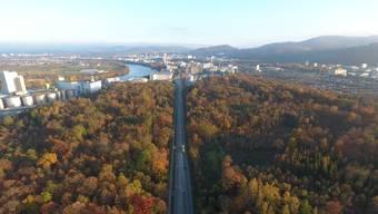 Basler Bürger befürchten wegen der Baselbieter Strassenpläne «beträchtliche Auswirkungen» auf den Hardwald.