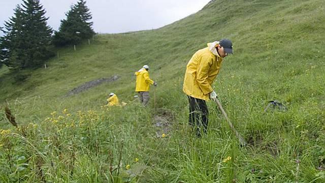 Gemeinnützige Arbeit in den Bergen (Symbolbild)