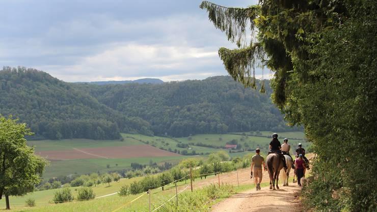 Trekking durch den Jurapark Aargau (Archivbild)