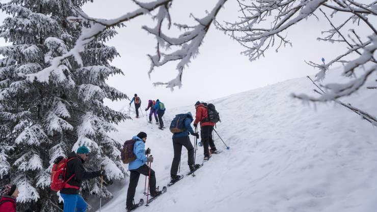Beim Schneeschuhlaufen und anderen Aktivitäten in der Natur soll darauf geachtet werden, dass die Wildtiere möglichst nicht aufgescheucht werden.