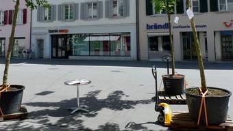 Experimentierfeld Kirchgasse: Ahornbäume auf Paletten samt Gabelstapler.