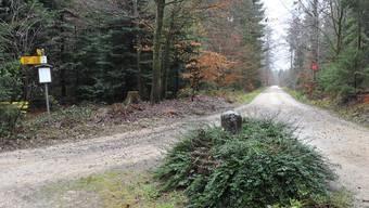 Die Gemeinde Fulenbach hat das örtliche Forstwesen nun selber in der Hand.