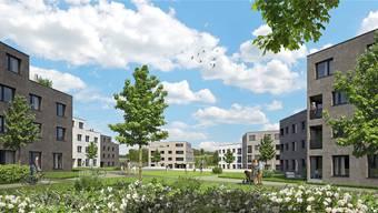 So soll es im neuen Quartier «In den Matten» in Othmarsingen dereinst aussehen: Wohnblöcke umsäumen eine parkähnliche Anlage. (Visualisierung)