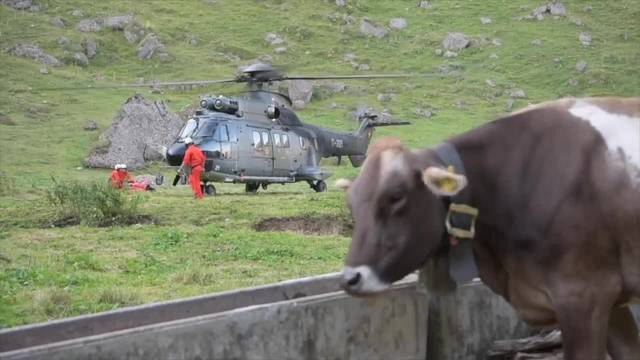 Helikopter versorgen dürstende Alpkühe mit Wasser
