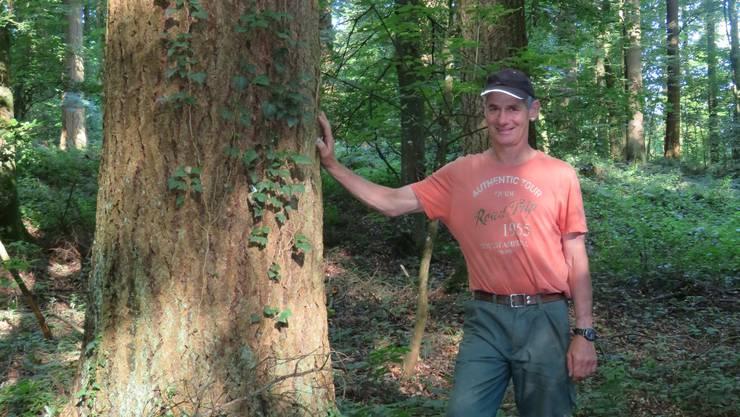Der Murianer Forstwart Sepp Troxler neben seinem Lieblingsbaum, einer Douglasie.