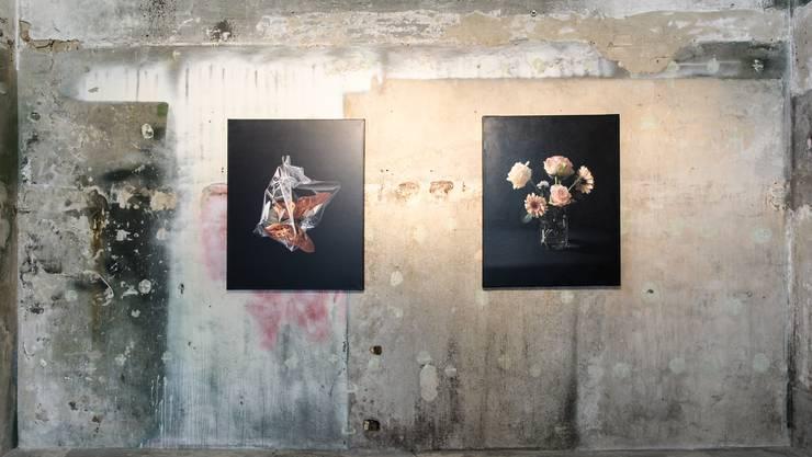 Werke von David Mollnor