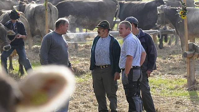 Einkommen der Bauern 2008 gestiegen