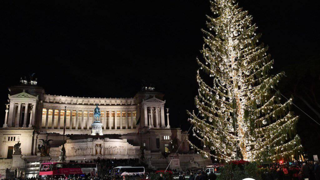 Der in der Kritik stehende Weihnachtsbaum auf der Piazza Venezia