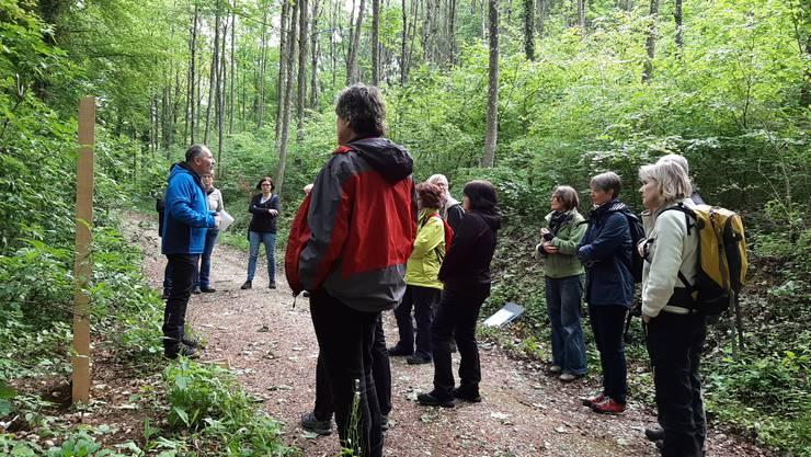 Auf einem geführten Rundgang stellten acht Fachleute und lokale Kenner eine Auswahl der Themenposten im Gebiet Kappel vor.