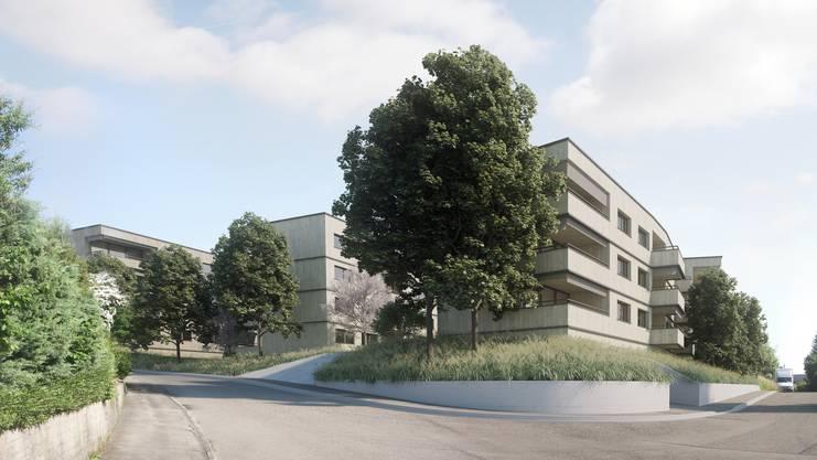 Das Gebiet Isleren in Rudolfstetten soll in den nächsten Jahren etappenweise überbaut werden – vorgesehen ist ein neues Quartier mit bis zu 450 Einwohnern – bisher existieren davon erst Visualisierungen.