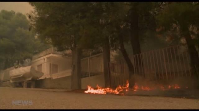 Über 60 Tote: Katastrophale Brände in Griechenland