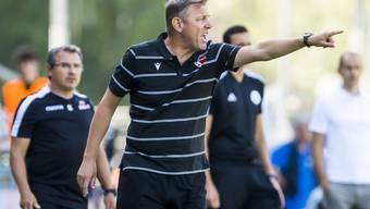 Stéphane Henchoz, Trainer FC Sion