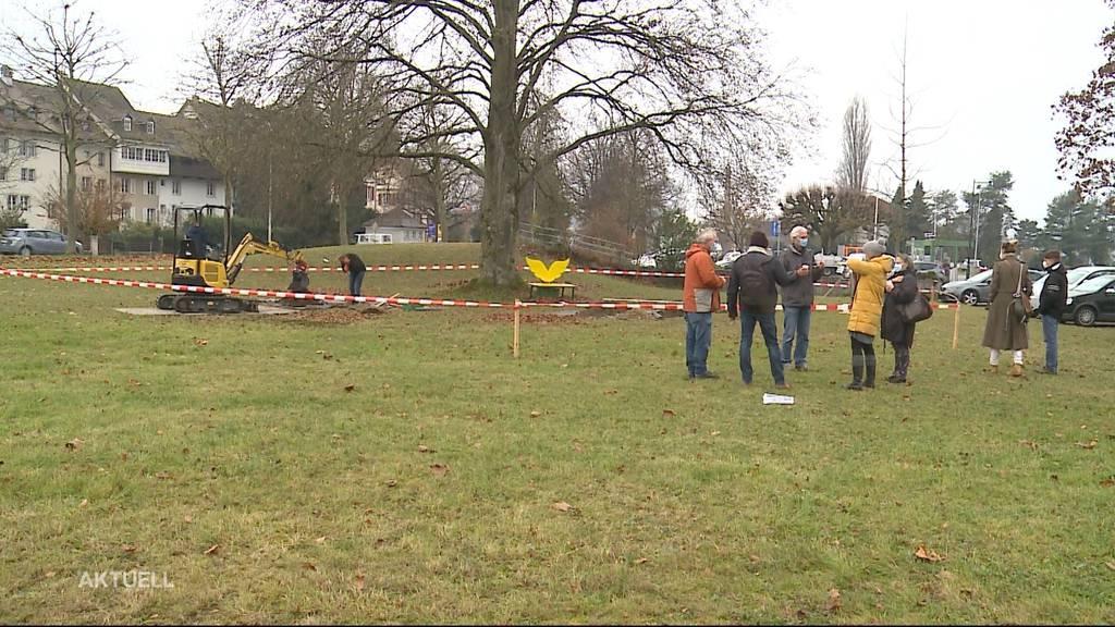 Protest gegen Baumfällung in Zofingen
