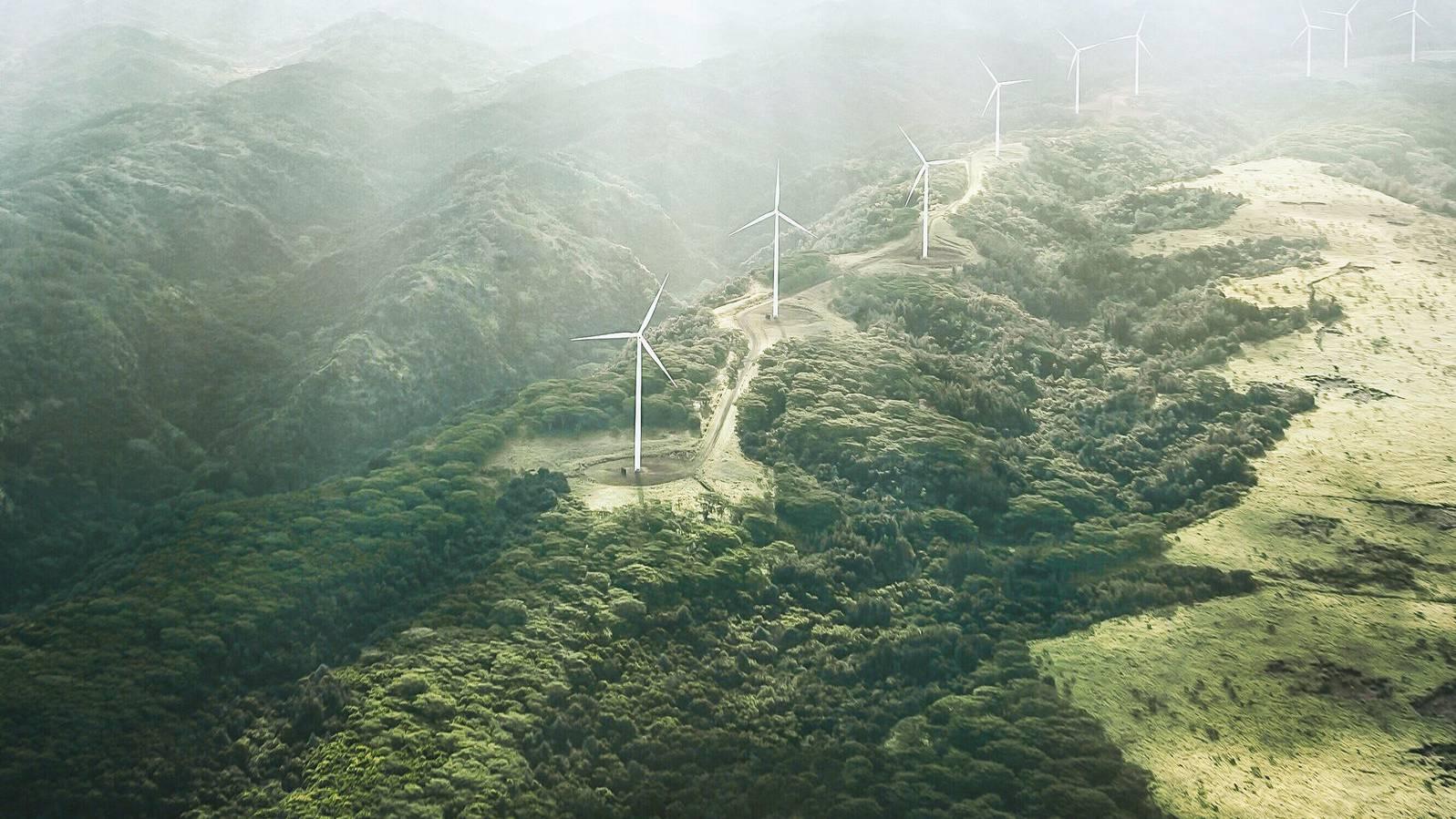 Die UBS setzt sich für Nachhaltigkeit ein.