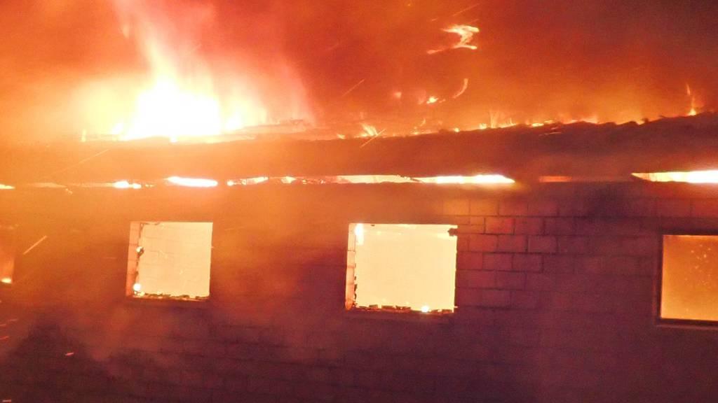 Stallbrand in Rothenhausen (TG): Mehrere Schweine in Flammen verendet