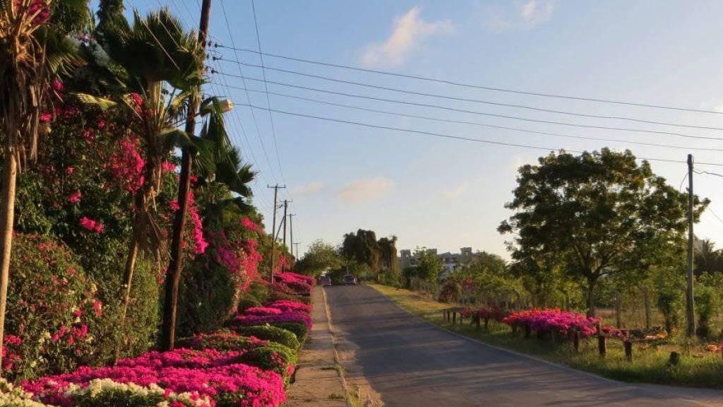 Nyali gilt als nobler Stadtteil Mombasas. Auf der Fahrt dorthin wurde offenbar ein Schweizer Touristenpaar getötet und in Tüchern gewickelt am Strassenrand liegengelassen. (Themenbild)