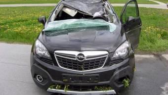 Das vom Hirsch getroffene und völlig zerstörte Auto.