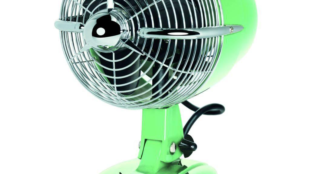 """Vom Rückruf betroffen ist der Ventilator """"Satrap style windy"""" in allen Farben"""