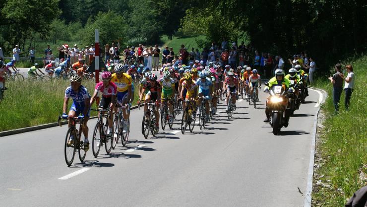 Am «Weininger»: Das Tour-de-Suisse-Feld auf der Etappe von Bremgarten nach Einsiedeln am 11. Juni 2006. (hä)