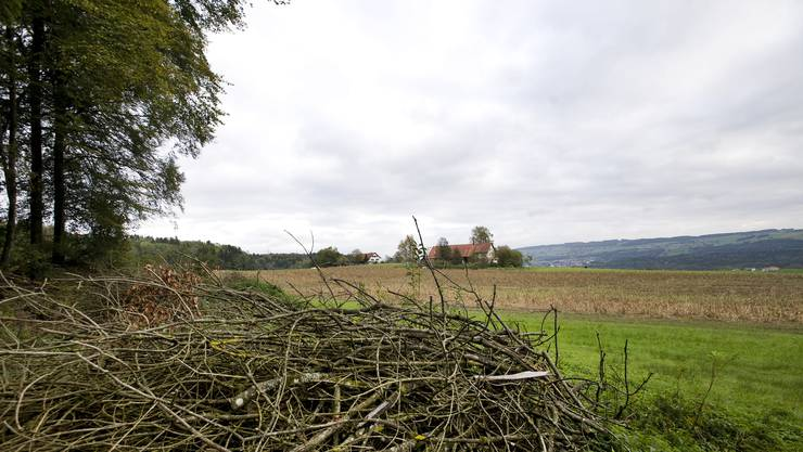 Die Gemeinde Niederwil wurde für ihr Engagement ausgezeichnet.