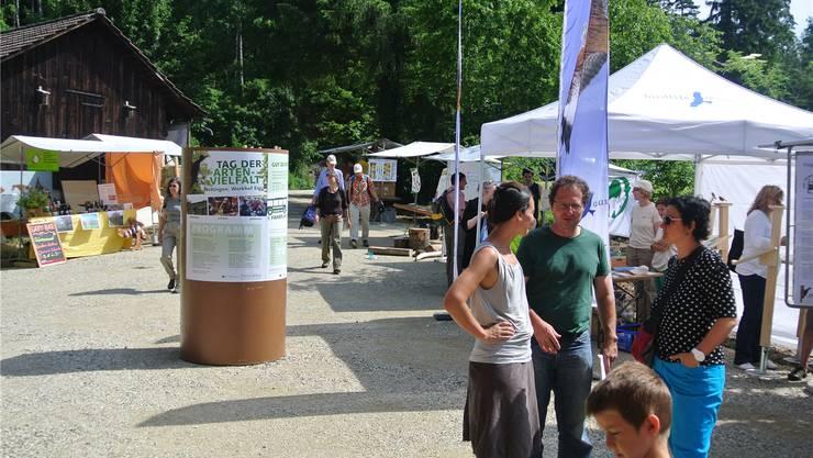 Zum Tag der Artenvielfalt (Foto der letztjährigen Veranstaltung) lädt Naturama Aargau am nächsten Sonntag in den ehemaligen Steinbruch Schümel in Holderbank.
