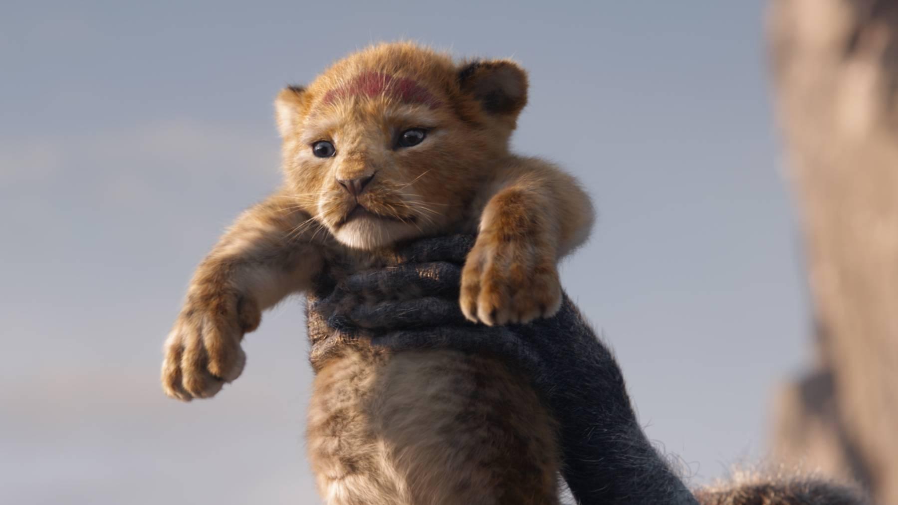 Kinotipp: Neuauflage von «König der Löwen»