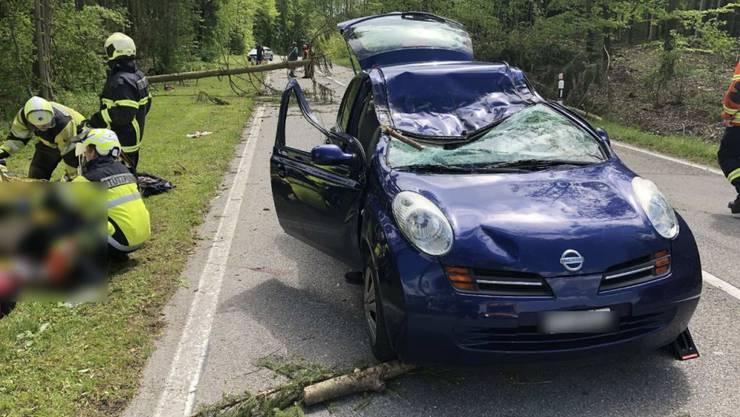 Ein Baum ist in Wallenried FR auf ein fahrendes Auto gefallen und hat die Beifahrerin getötet.