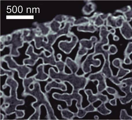 11. Juni 2014: Tomografie kann das Innere von Objekten in 3D abbilden – von Zellstrukturen bis zu technischen Geräten. PSI-Forscher haben mit einem neuen Verfahren eine Auflösung von 16 Nanometern erreicht und so einen Weltrekord aufgestellt. Damit soll die detaillierte Darstellung von biologischem Gewebe möglich werden.