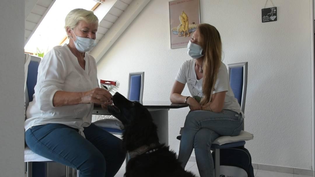«Es kommt unheimlich viel Gefühl von Cara rüber»: Eine Patientin der Spitex Heitersberg über ihre Erfahrungen mit dem Therapiehund