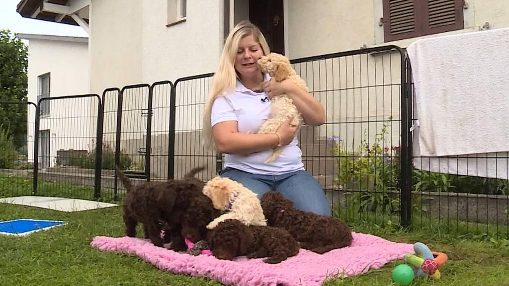 Steffi Probst mit Trüffelhundewelpen