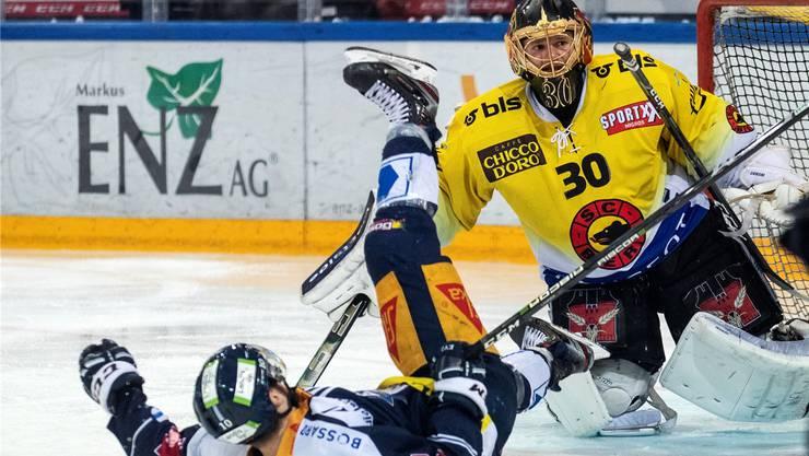 Immer wieder Genoni: Auch Zugs Lammer prallt am SCB-Goalie ab.