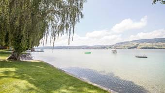 Vor dem Strandbad Seerose soll dem See Trinkwasser entnommen werden.