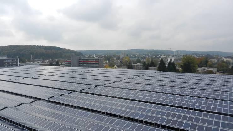 Solarpanels soweit das Auge reicht. Vom Boden her ist die Anlage allerdings kaum zu bemerken.