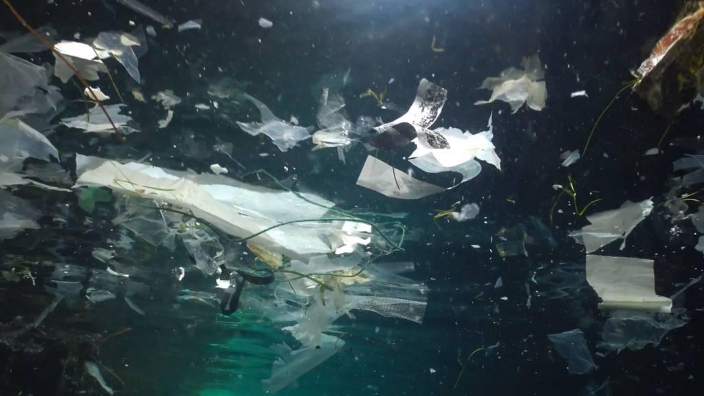 NZZ Der Müll und das Meer