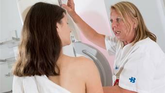Brustkrebs ist bei Frauen in westlichen Nationen die häufigste Krebserkrankung.