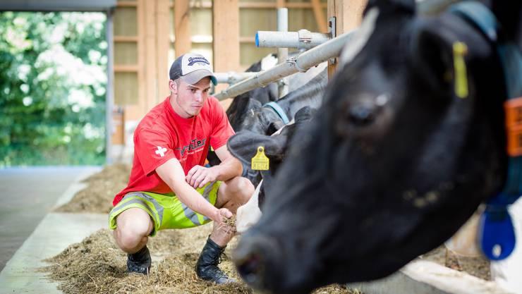 Junglandwirte haben, auch ohne bäuerlichen Hintergrund, gute Beschäftigungsaussichten nach der Berufslehre, heisst es im Wallierhof. (Symbolbild)