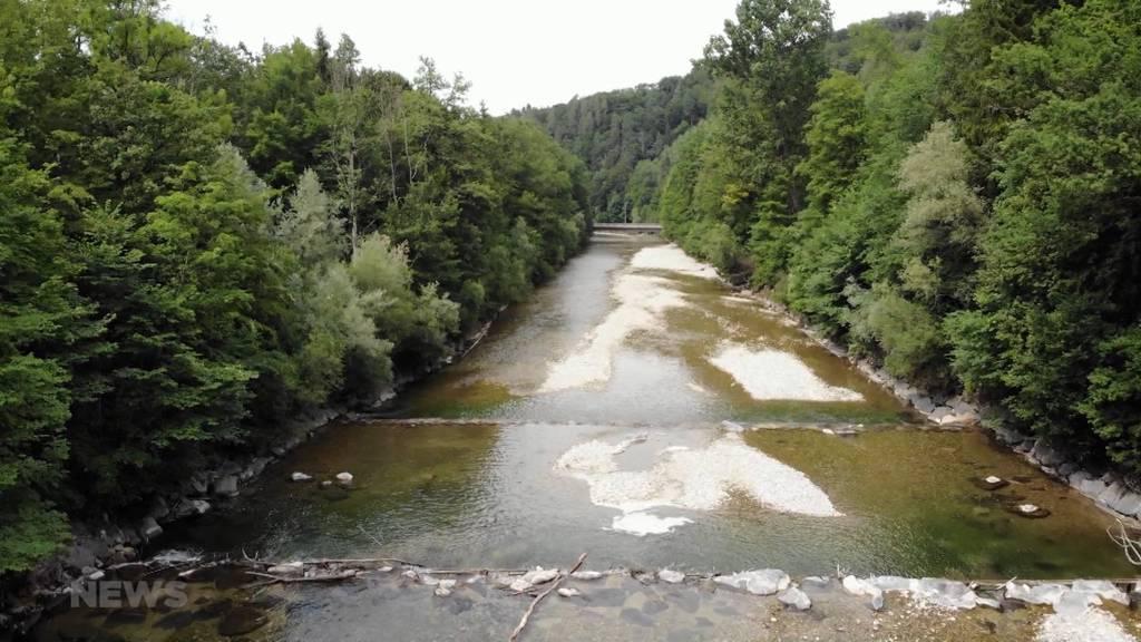 Stromproduktion bedroht Gleichgewicht der Schweizer Bäche und Flüsse