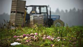 Für die Aargauer Bauern sind die Empfehlungen des Bauernverbands essenziell.