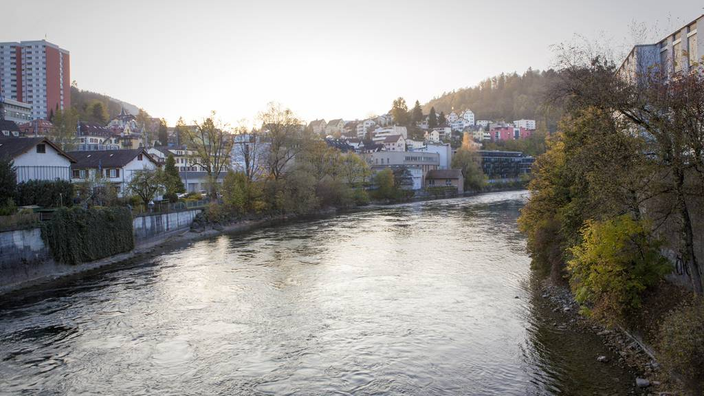 Reussschwimmer in Luzern vor Ertrinken gerettet