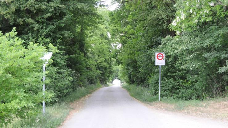 Trotz Fahrverbot: Hier fahren immer wieder Autolenker durch, die den Stau vor dem Grenzübergang Koblenz-Waldshut umfahren wollen.