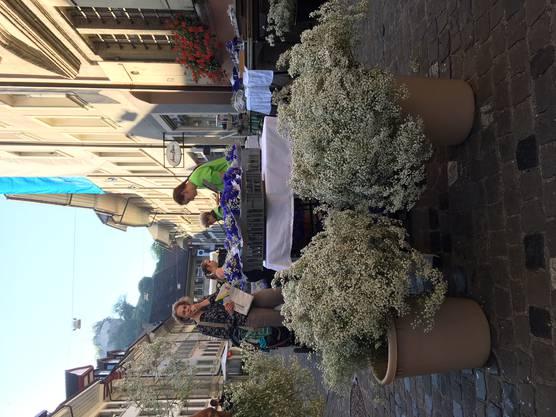 Blumenmeer in der Rathausgasse: Die Vorbereitungen aus Jugendfest sind in vollem Gang.