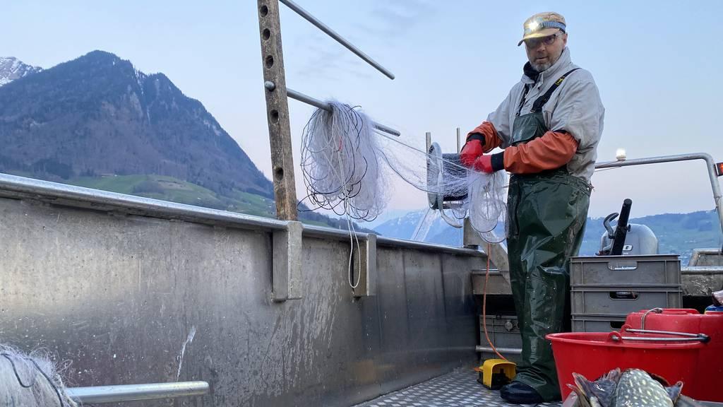 Kari Frank aus Ennetbürgen holt seine Netze bei jedem Wetter ein