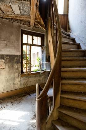 Efeu kämpft sich ins Treppenhaus, der Boden ist bedeckt mit Staub und Schutt.