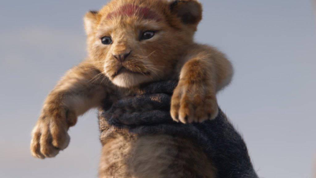 """""""The Lion King"""" setzte sich am Wochenende vom 8. bis 11. August 2019 nach einem Unterbruch von einer Woche wieder an die Spitze der Deutschschweizer Kinocharts. (Archiv)"""