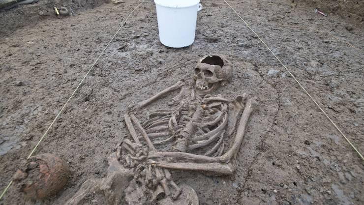 Bei den Grabungen wurden auch Skelette gefunden