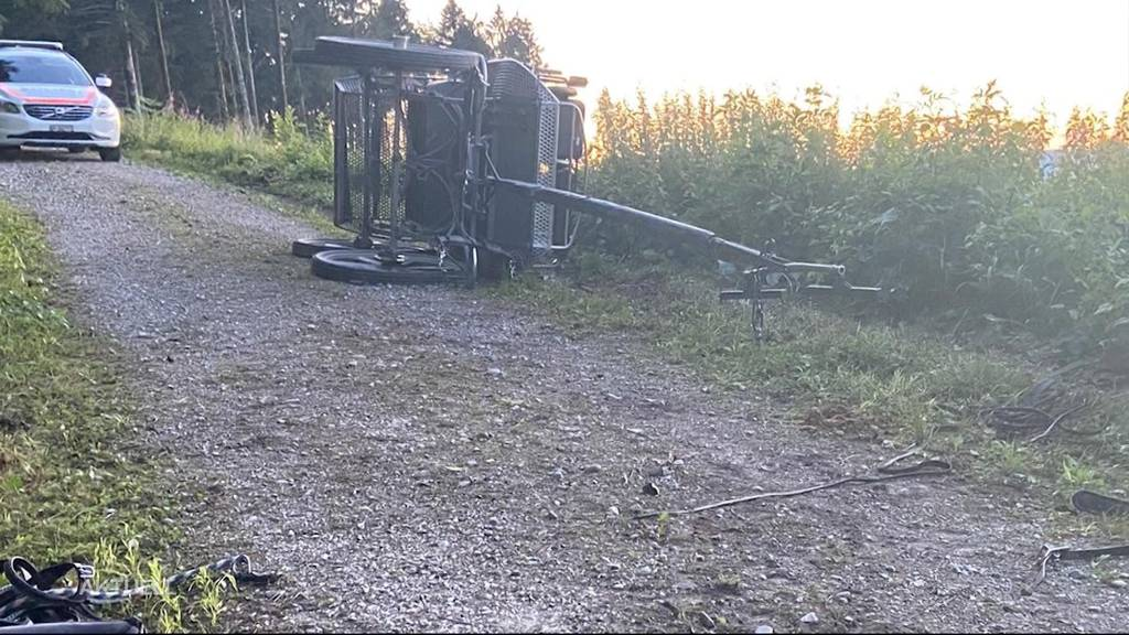 5 Personen müssen nach Kutschen-Unfall auf Waldweg ins Spital